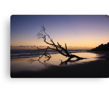 Dawn at Kingscliff Beach ... Canvas Print