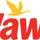 Wawa by Dani & To Co.