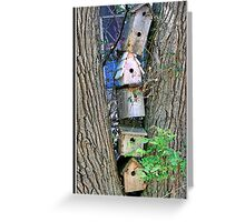 High-Rise For The Birds Greeting Card
