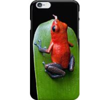 Red poison dart frog iPhone Case/Skin