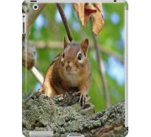 Chipmunk  iPad Case/Skin