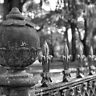 Cemetery Fence by Michael McCasland