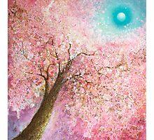 Blossom Magic Photographic Print