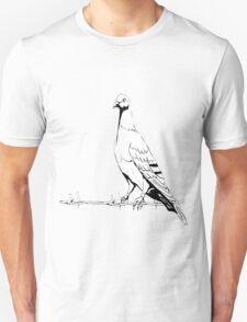dove, peace, T-Shirt