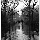 Washington Square Park, Greenwich Village, New York by Will Corder | Photography