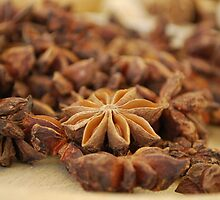 Star Anise nuts by Crimmy