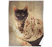 Lovely cat Poster