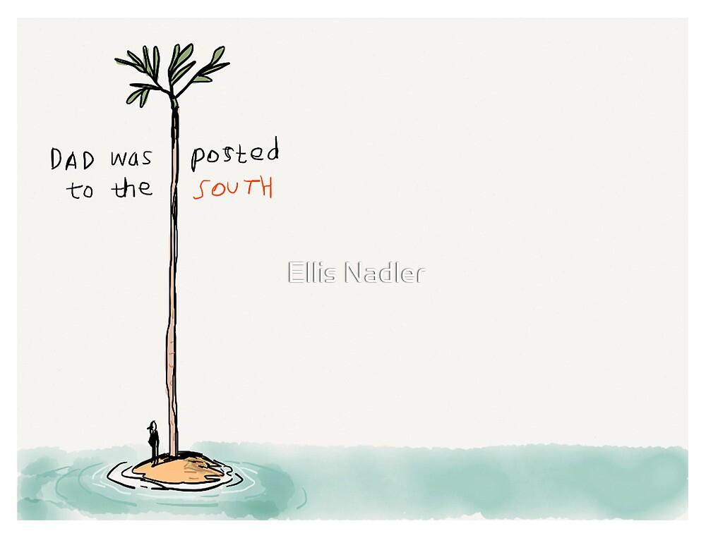 South by Ellis Nadler