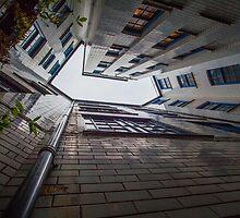 Looking up by Matt-D-Allen