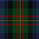 00313 MacLaren (labelled) Tartan Fabric Print Iphone Case by Detnecs2013