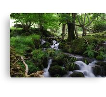 Welsh stream Canvas Print