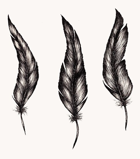Three Feathers by samclaire