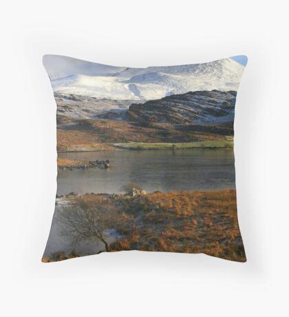 Killarney Throw Pillow