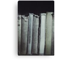 Books beautiful books Canvas Print
