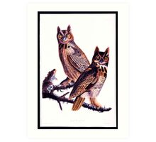 First American West  The Ohio River Valley, 1750-1820 - Great horned owl Art Print