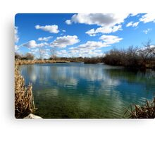A Beautiful Day In The Neighborhood Canvas Print