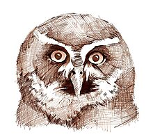 Spectacled Owl Photographic Print