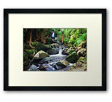 Sherbrooke Forest Waterfall Dandenong Ranges Framed Print