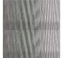 Glitch 1 Photographic Print