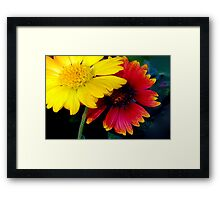 Yellow and red impact Framed Print