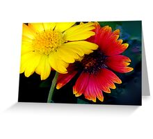Yellow and red impact Greeting Card