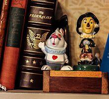 Bookshelf by Nevermind the Camera Photography