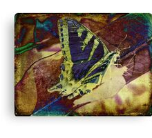 With Wings Canvas Print