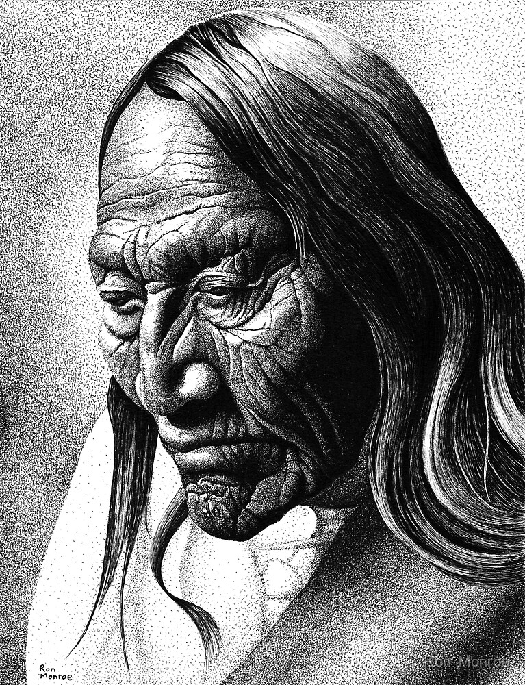 The Native by Ron  Monroe