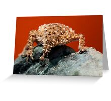Knob Tailed Gecko Tail Greeting Card