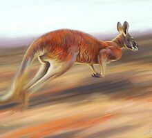 'On the move - Red kangaroo ' by steve morvell