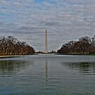 Washington Monument by Michael Powell
