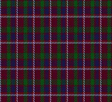 00330 Lanark Tartan Fabric Print Iphone Case by Detnecs2013
