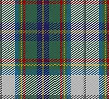 00331 Lanark Highlands District Tartan Fabric Print Iphone Case by Detnecs2013