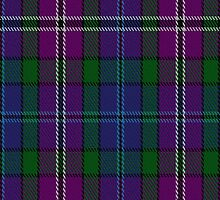 00334 South Lanarkshire District Tartan Fabric Print Iphone Case by Detnecs2013
