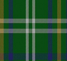 00342 Meath County, Crest Range District Tartan Fabric Print Iphone Case by Detnecs2013