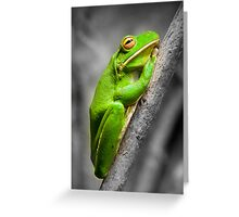 The white lipped Treefrog. Greeting Card