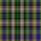 00351 Roscommon County, Crest Range District Tartan Fabric Print Iphone Case by Detnecs2013