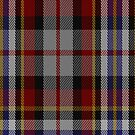 00355 Tipperary County, Crest Range District Tartan Fabric Print Iphone Case by Detnecs2013