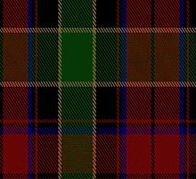 00359 Waterford Tartan Fabric Print Iphone Case by Detnecs2013