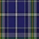 00360 Waterford County, Crest Range District Tartan Fabric Print Iphone Case by Detnecs2013
