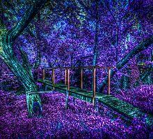 Spooky Bridge by robyn70