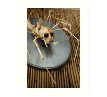 spider monkey taxidermy photograph Art Print