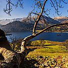 Glenridding - Cumbria by David Lewins LRPS