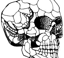 Human Skull B&W by Fred  Wordie