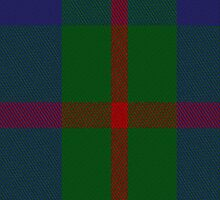 00367 Agnew Family Tartan Fabric Print Iphone Case by Detnecs2013