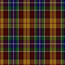 00373 Isle of Arran #3 Tartan Fabric Print Iphone Case by Detnecs2013