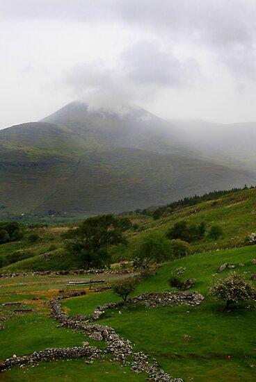 Kerry, Ireland by David O'Riordan