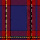 00377 Royal Salvation Army Dress Tartan Fabric Print Iphone Case by Detnecs2013
