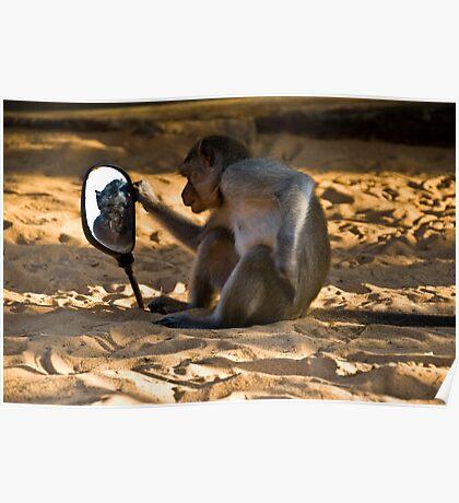 evil monkey in Vietnam Poster