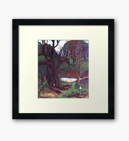 my home in the woods . . . . Framed Print